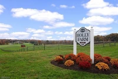 Delaware Twp. Single Family Home For Sale: 82 Sandy Ridge Rd