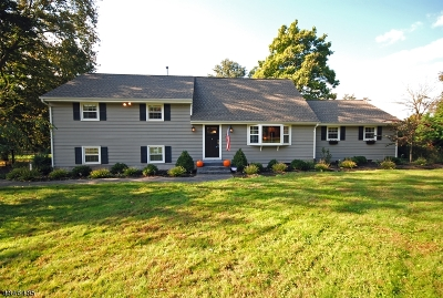 Bedminster Twp., Bernardsville Boro, Far Hills Boro, Mendham Boro, Peapack Gladstone Boro, Harding Twp., Bridgewater Twp. Single Family Home For Sale: 445 Foothill Rd