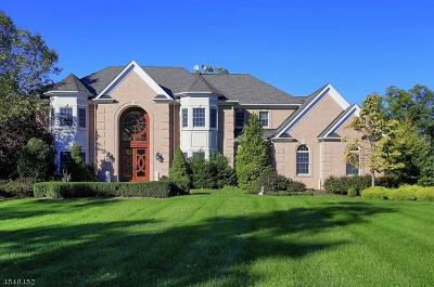Warren Twp. Single Family Home For Sale: 5 Raspberry Trl