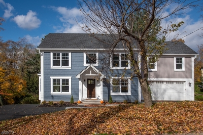 Bernardsville Boro Single Family Home For Sale: 40 Prospect St