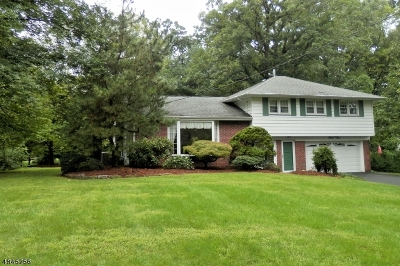 Montville Twp. Single Family Home For Sale: 33 Douglas Dr