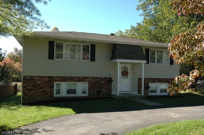 Sussex County Single Family Home For Sale: 17 Muscotah Rd