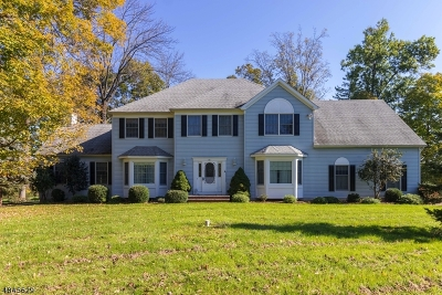 Raritan Twp. Single Family Home For Sale: 14 Eagle Drive