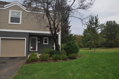 Bridgewater Twp. NJ Rental For Rent: $2,700