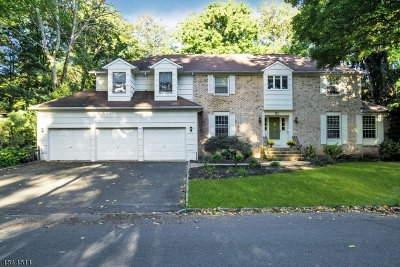 Westfield Town NJ Single Family Home For Sale: $859,000