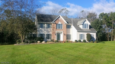 Montgomery Twp. Single Family Home For Sale: 30 Lilac Way