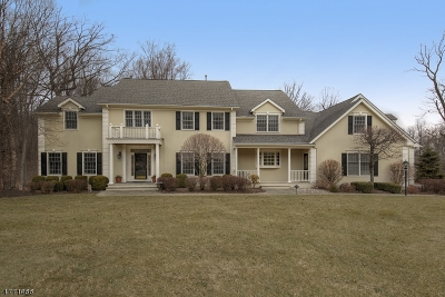 Mendham Twp. NJ Single Family Home For Sale: $1,098,000