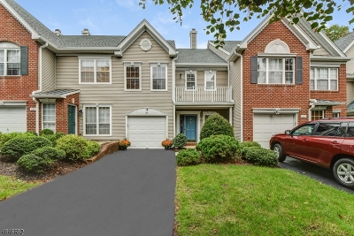 Readington Twp. Condo/Townhouse For Sale: 107 S Branch Dr