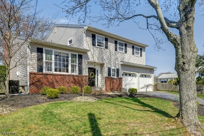 Edison Twp. Single Family Home For Sale: 4 Library Pl