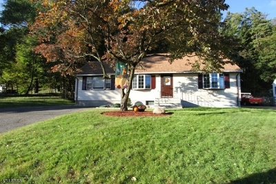 Passaic County Single Family Home For Sale: 594 Goffle Hill Rd