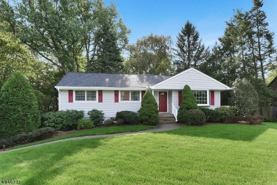 Wyckoff Twp. Single Family Home For Sale: 810 Mountain Ave
