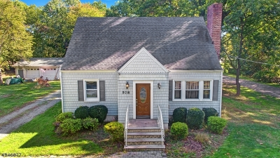 Westfield Town Single Family Home For Sale: 508 Springfield Ave