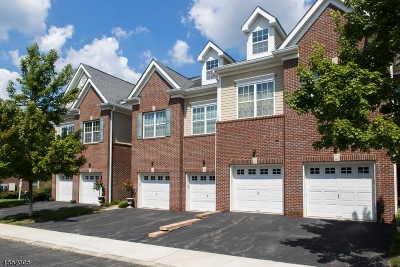 Morristown Town NJ Rental For Rent: $3,000