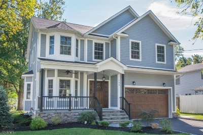 Westfield Town NJ Single Family Home For Sale: $1,049,000