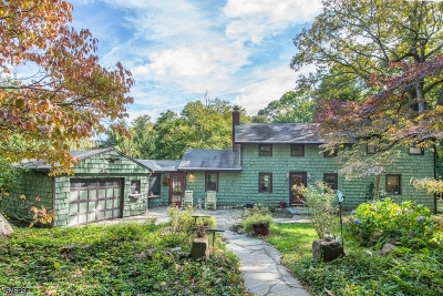 Morris County Single Family Home For Sale: 31 Sheep Hill Rd