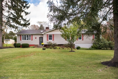 Morris County Single Family Home For Sale: 23 Starlight Rd