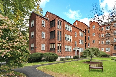 Cranford Twp. Condo/Townhouse For Sale: 217 Prospect Ave Apt 11-2a #2A
