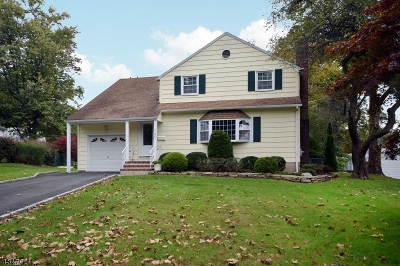 Westfield Town Single Family Home For Sale: 145 Tudor Oval