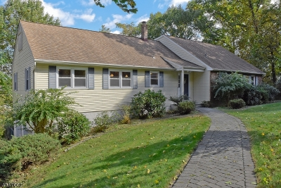 Morris Plains Boro Single Family Home For Sale: 113 Sun Valley Way
