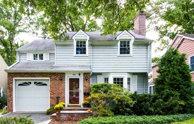 Westfield Town Single Family Home For Sale: 900 Tice Pl