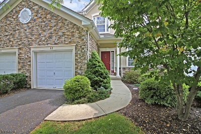 Readington Twp. Condo/Townhouse For Sale: 63 Ebersohl Cir