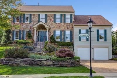 Bernards Twp. NJ Single Family Home For Sale: $1,099,000
