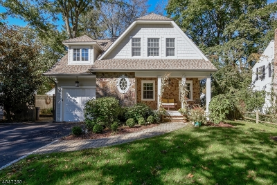 New Providence Single Family Home For Sale: 59 Holmes Oval