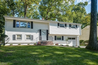 Livingston Twp. Single Family Home Sold: 68 Trocha Ave