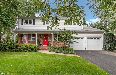 Westfield Town Single Family Home For Sale: 329 Scotch Plains Ave
