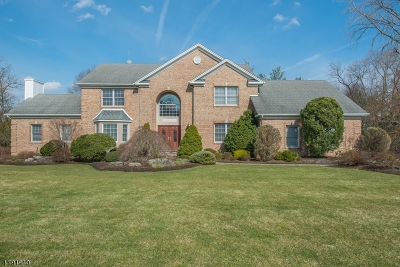 Montville Twp. Single Family Home For Sale: 2 Melissa Ct