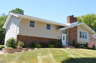 Parsippany-Troy Hills Twp. Single Family Home For Sale: 17 Greenbriar Rd
