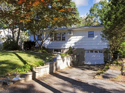 Oakland Boro Single Family Home For Sale: 6 1st St