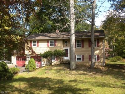 Bridgewater Twp. NJ Single Family Home For Sale: $375,000