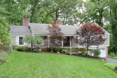 Montville Twp. Single Family Home For Sale: 19 Vista Rd
