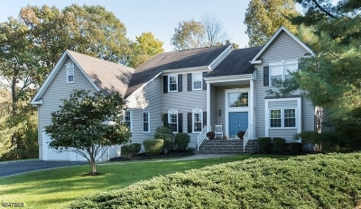 Bridgewater Twp. Single Family Home For Sale: 8 McManus Drive