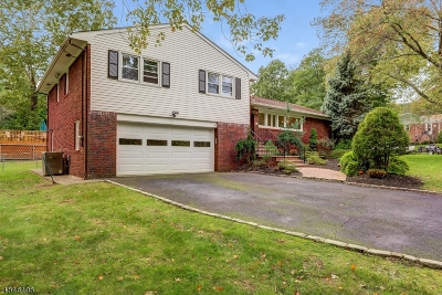 Millburn Twp. Single Family Home For Sale: 64 Cypress St