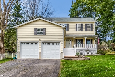 Clinton Town, Clinton Twp. Single Family Home For Sale: 5a Marudy Dr