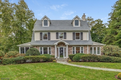 Summit Single Family Home For Sale: 69 Beekman Rd