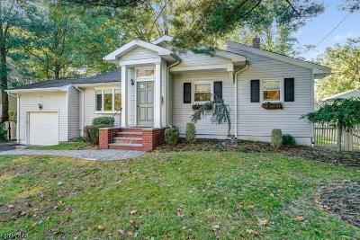New Providence Single Family Home For Sale: 37 Coddington Dr