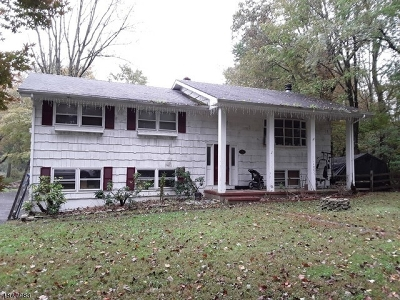 Tewksbury Twp. Single Family Home For Sale: 174 Old Turnpike Rd