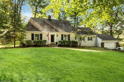 Morris Twp., Morristown Town Single Family Home For Sale: 2 Armstrong Rd