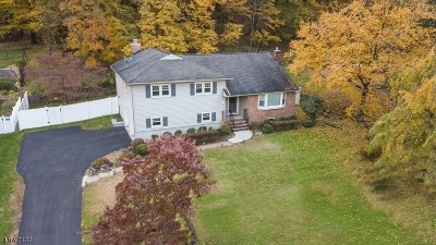 Morris Twp., Morristown Town Single Family Home For Sale: 33 Molly Stark Dr