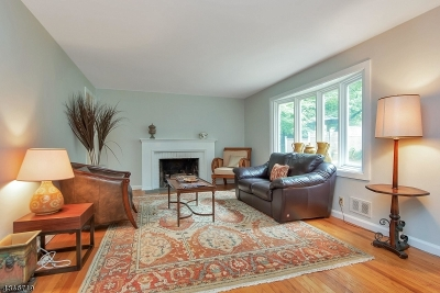 Summit Single Family Home For Sale: 160 - 162 Springfield Avenue