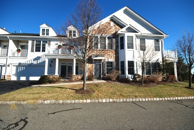 Woodland Park Condo/Townhouse For Sale: 13 Galena Rd