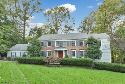 Morris Twp., Morristown Town Single Family Home For Sale: 18 Eagle Nest Rd