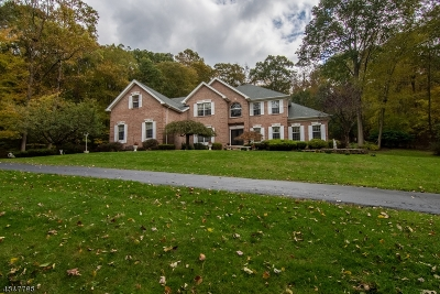 Sparta Twp. Single Family Home For Sale: 13 Rose Ln