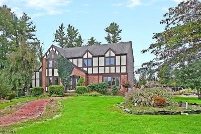 Readington Twp. Single Family Home For Sale: 8 Hageman Rd