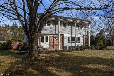 Mendham Boro, Mendham Twp. Single Family Home For Sale: 48 Talmage Rd