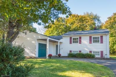 Bernards Twp., Bernardsville Boro Single Family Home For Sale: 333 Mt Airy Rd
