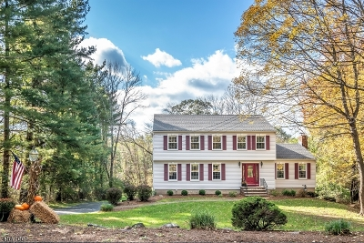 Randolph Twp. Single Family Home For Sale: 54 Ironia Rd